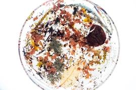 Metanical Platter